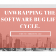 Unwrapping The Software Bug Life Cycle