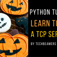 Write TCP Server In Python