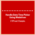 Handle Date Time Picker Control Using Webdriver