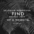 Selenium Webdriver Exercise - Find Broken Links On a Website